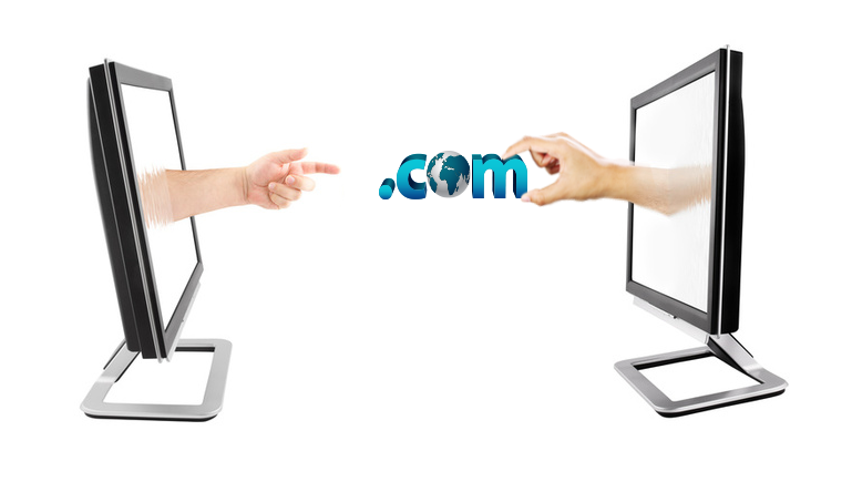 Domain name transfer procedure
